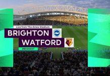 brighton-vs-watford