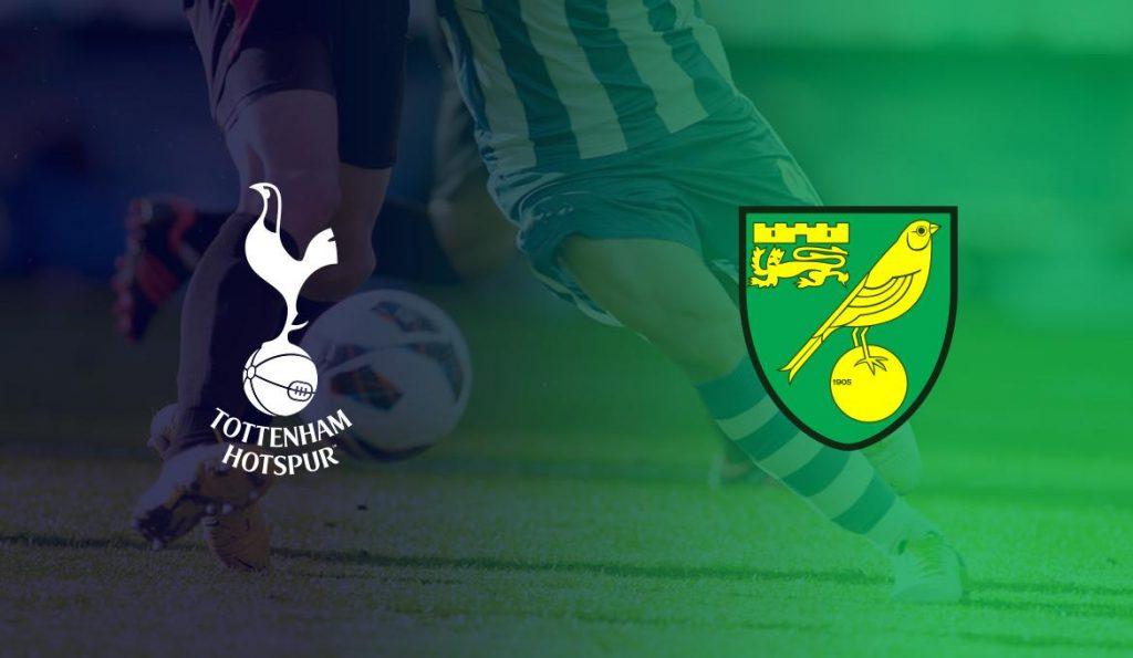 Tottenham-vs-Norwich-fa-cup