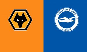 Wolves-vs-Brighton-Preview