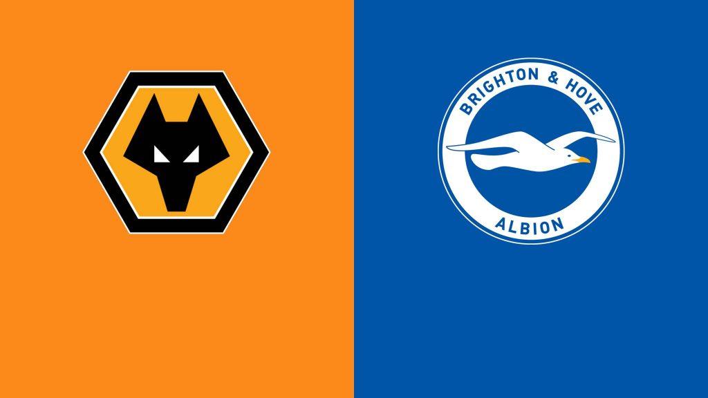 Wolves-vs-Brighton-Preview